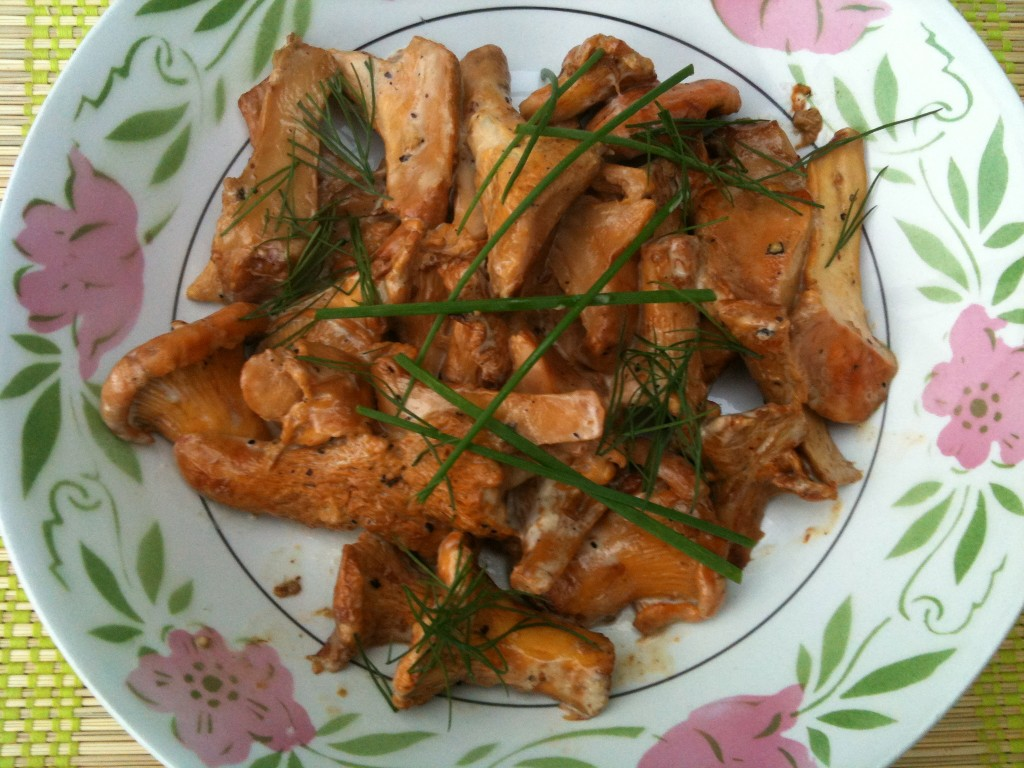 Жареные рыжики с картошкой рецепт с фото