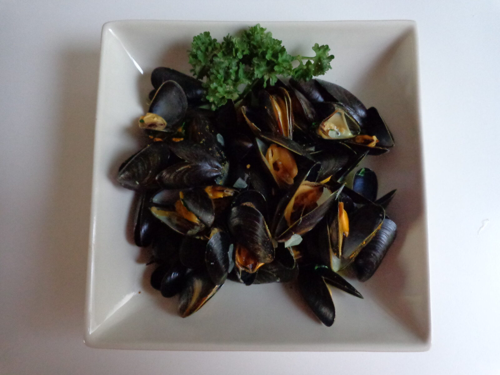 Mussel Soup With Avocado, Tomato, And Dill Recipes — Dishmaps