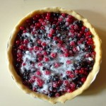 red and black currant tart3
