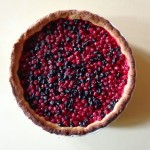 red and black currant tart2