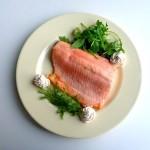 sea trout1